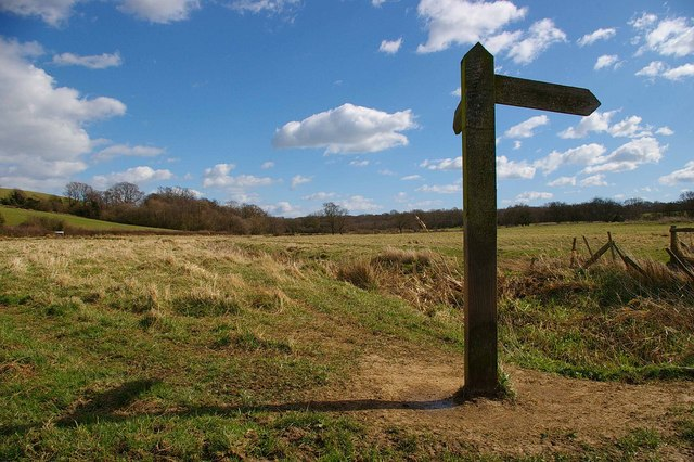 The Way to Rye