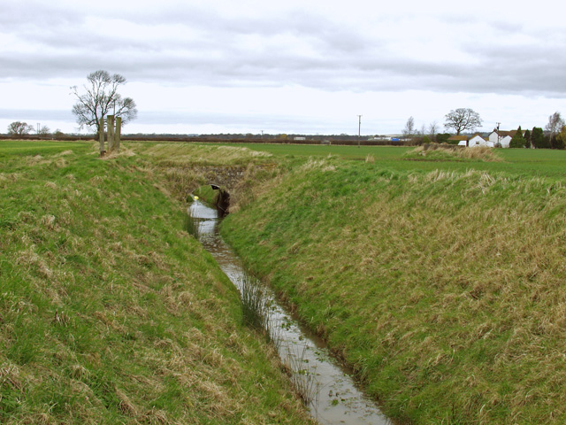 Drain near Mole Lodge