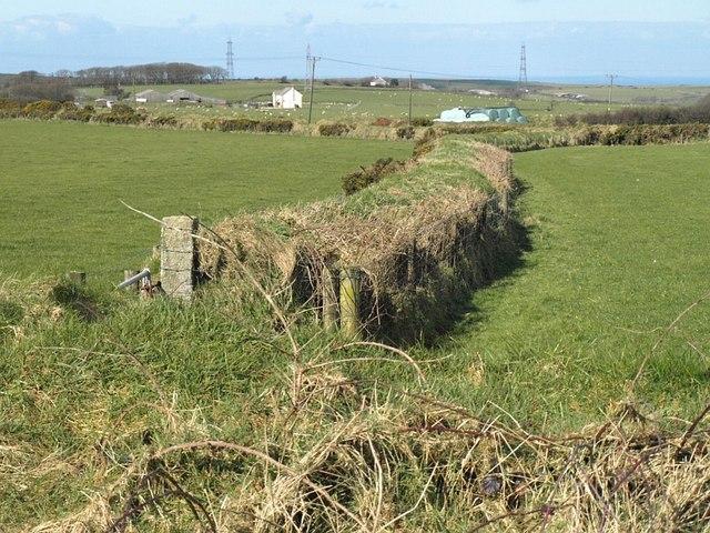 Field boundary, Trehane
