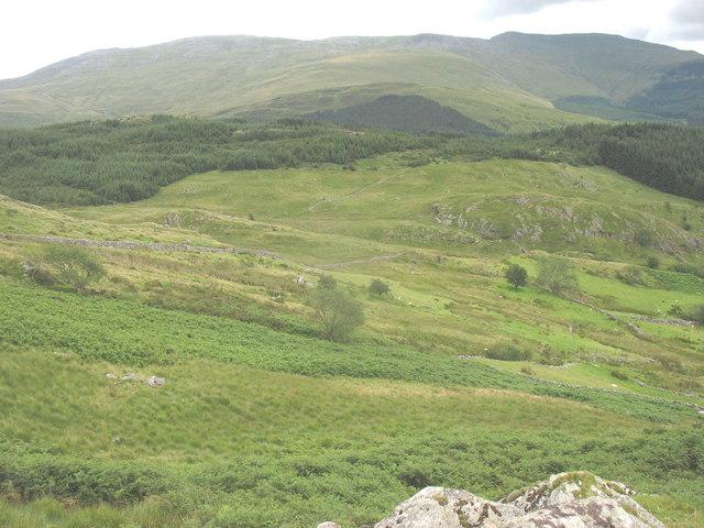 Ffriths above Cwm Mynach