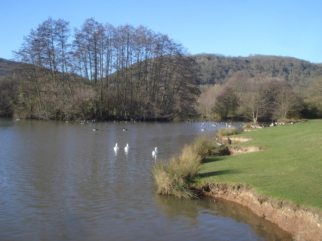The Mill Pond - 2