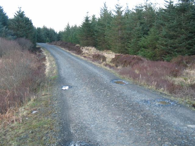 Kintyre Way track