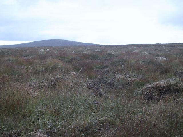 Moorland between Pentland Road and Stacaiseal