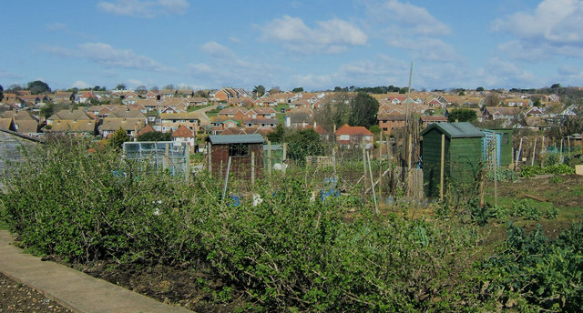 Looking north over Seaford Allotments