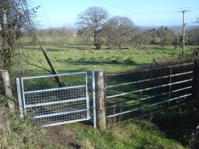 Gates at Glenberrow
