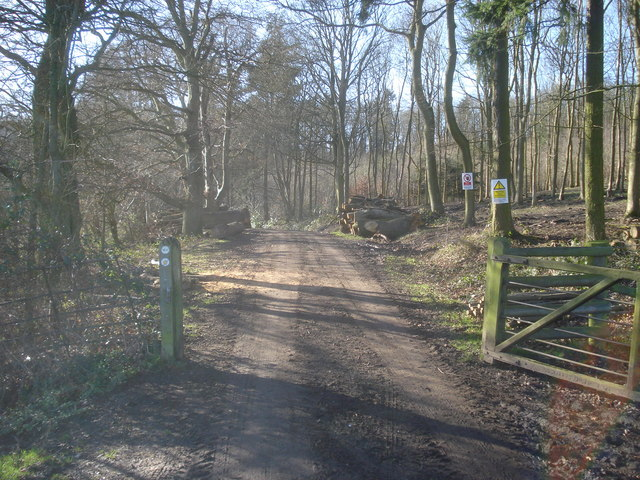 Entrance to Ladywell Coppice