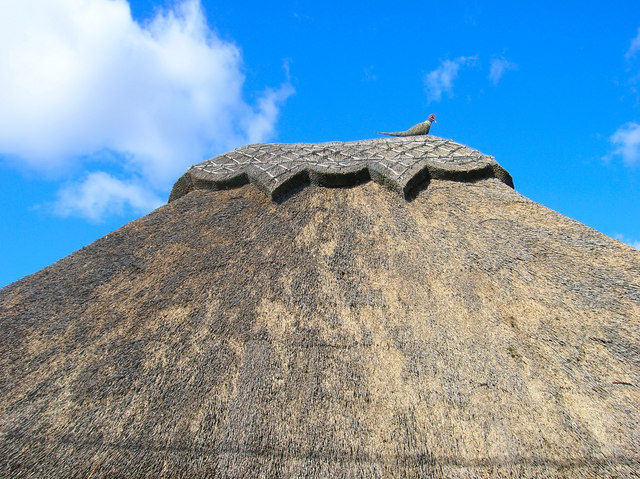 Thatched Roof, Amberley Court