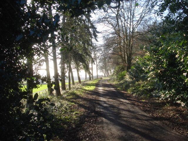 Bromesberrow Estate Track