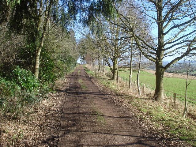Bromesberrow Estate Track - 3