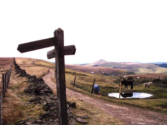 Shutlingsloe from Signpost at Stake Farm
