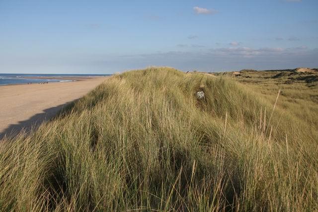 First dune ridge