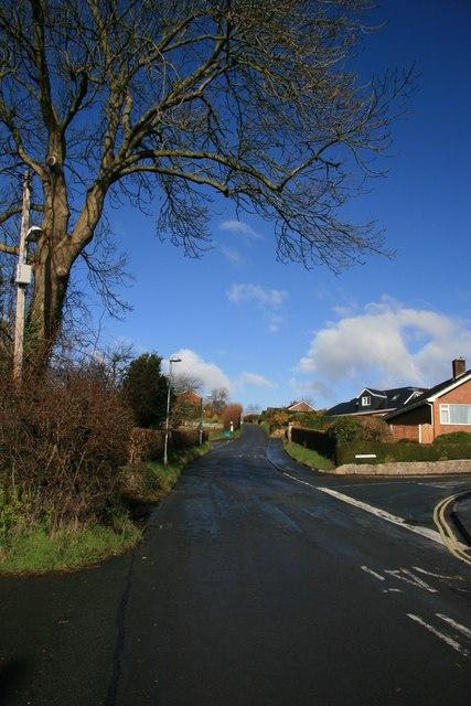 Bryn Lane, Newtown / Y Drenewydd