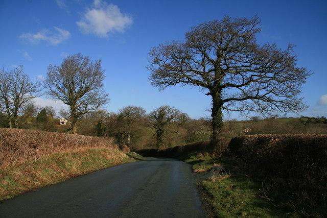 Bryn Lane