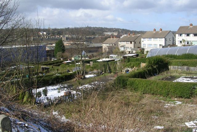 Allotments - Queen's Road