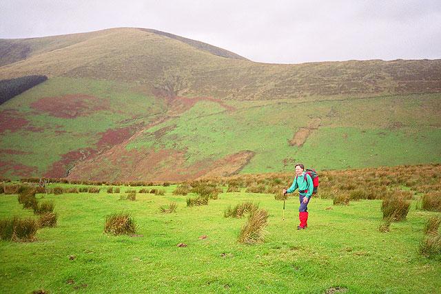 Mynydd Cefn-Caer