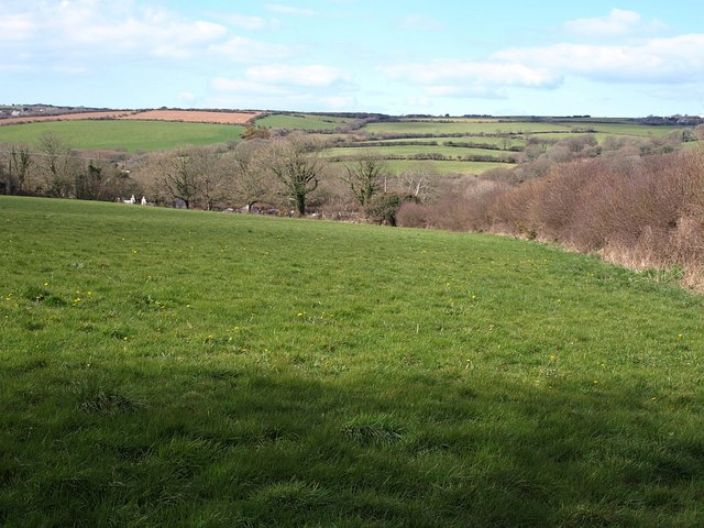 Field at Trewalder