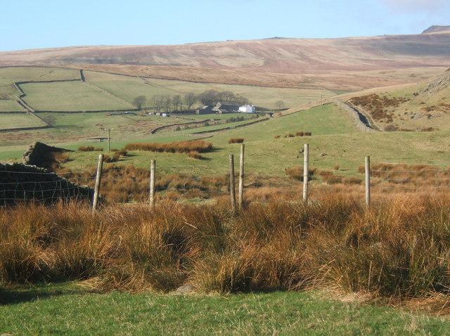 Hill farmland, looking towards Fenwick
