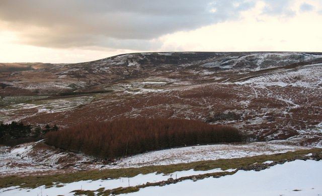 Dunsforth's Hill