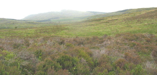 View north-west across the blanket bog with a misty Rhobell Fawr in the background