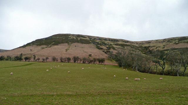 Upper pastures near Capel-y-ffin