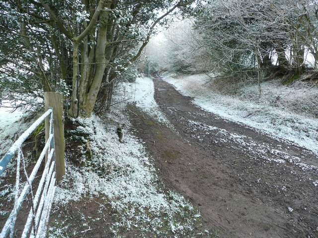 Drove Road above Craswall