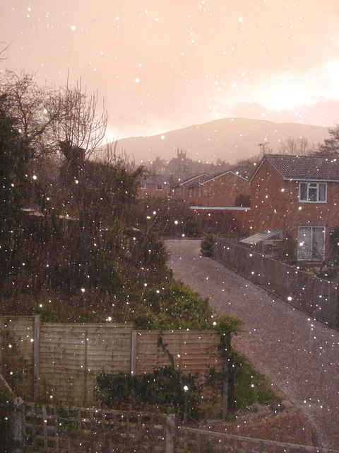 Bank Holiday Snow Shower at Fernhill Grove - 1