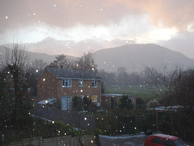 Bank Holiday Snow Shower at Fernhill Grove - 2