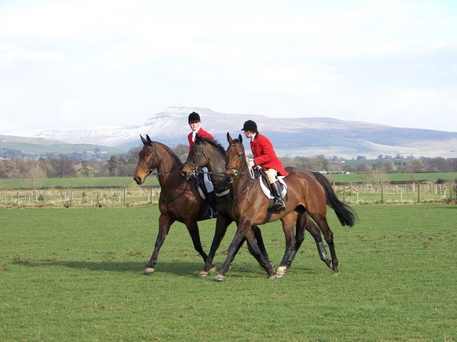 Huntsmen retrieve racehorse