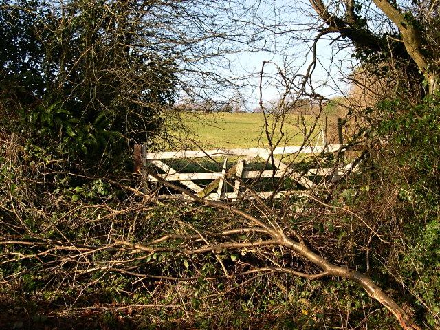 Blocked Field Gate