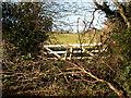 SX0957 : Blocked Field Gate by Tony Atkin