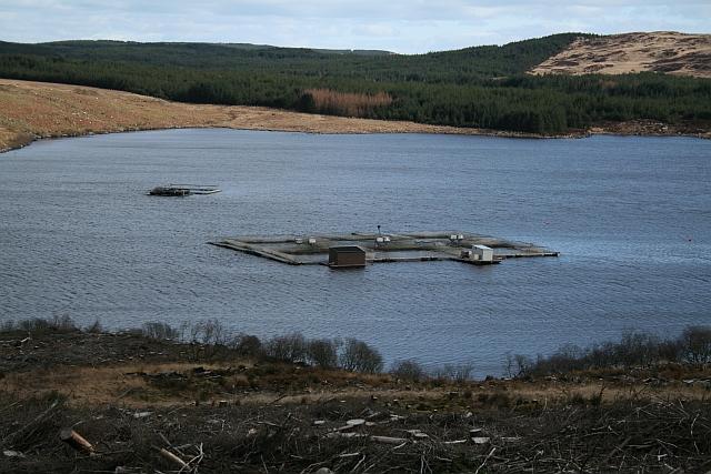 Fish Farm on Loch Garasdale
