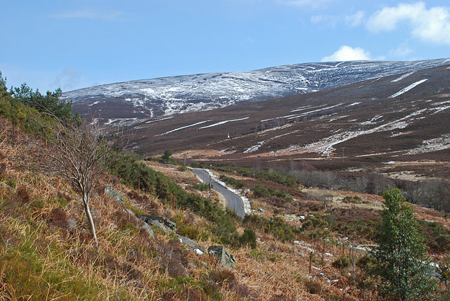 Public road through the Forest of Birse