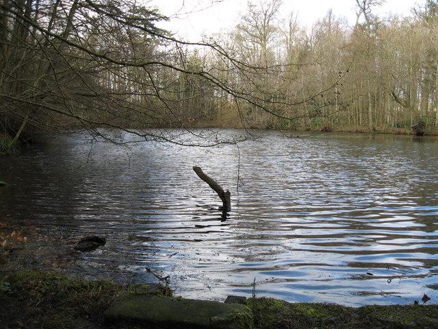 Middle Pond at Wallington