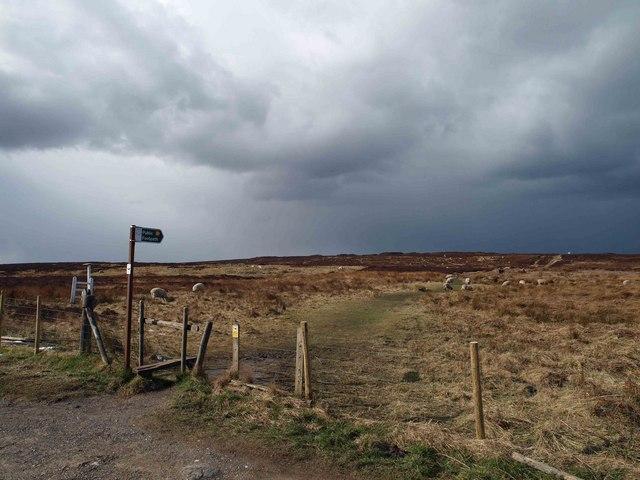 Moorland footpath