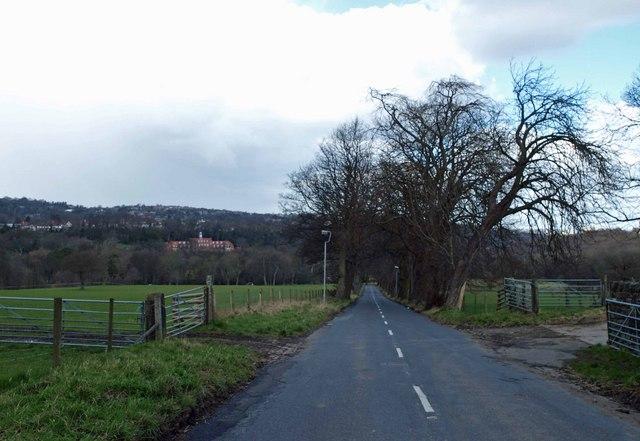 Whiteley Wood Lane