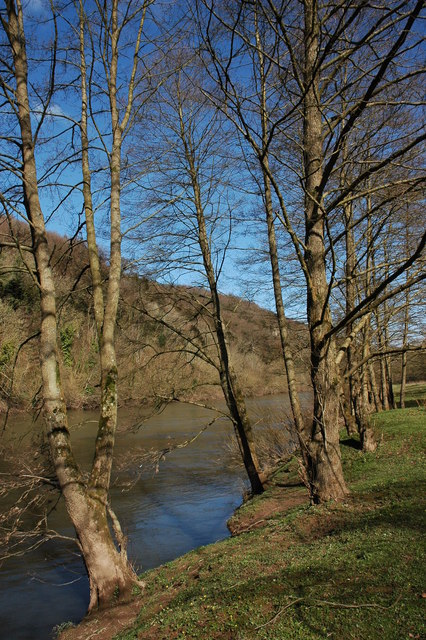 The River Wye near Symonds Yat