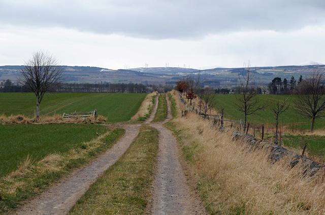Farm Track and Farmland