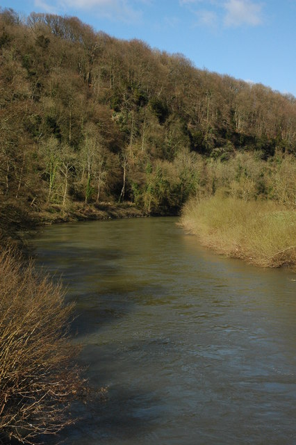 The River Wye at the Biblins