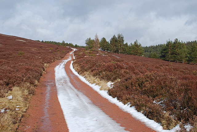 Track to Glencat from Forest of Birse