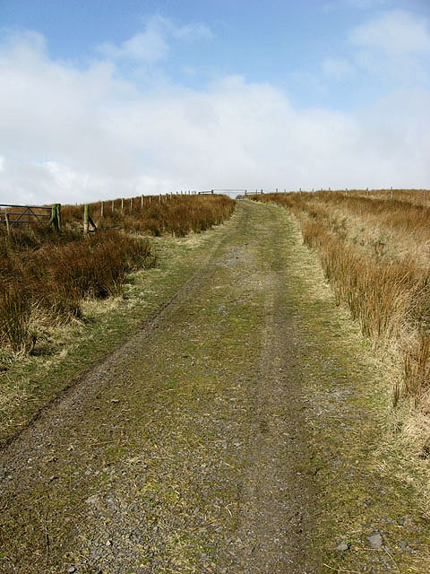 A grass track at Raes Knowes