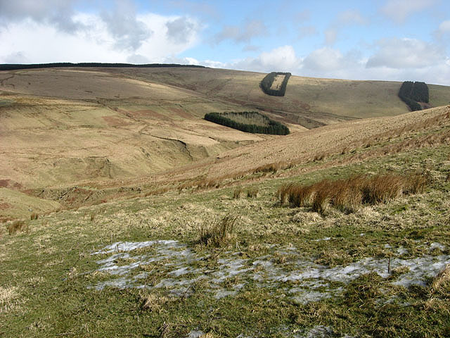Southern Uplands countryside