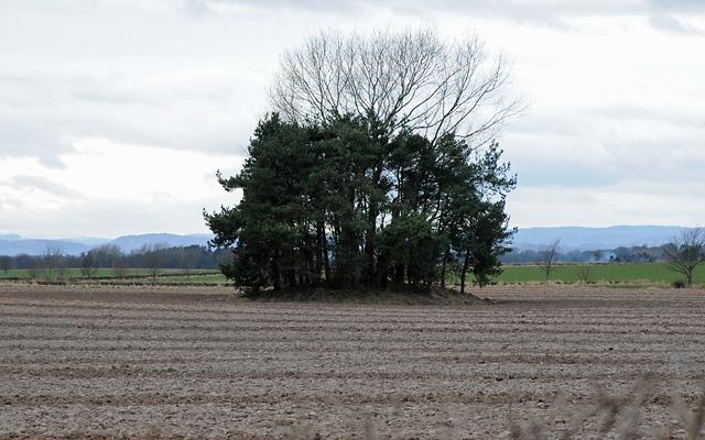 Mound near Auchtertyre