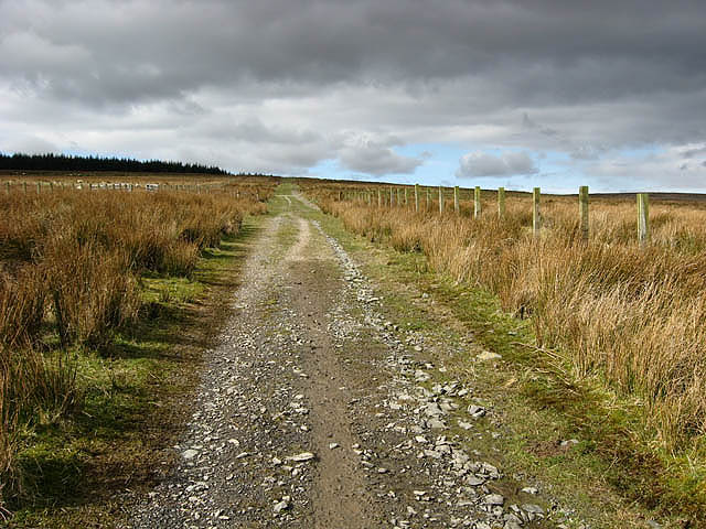 A track running through rough grazing land