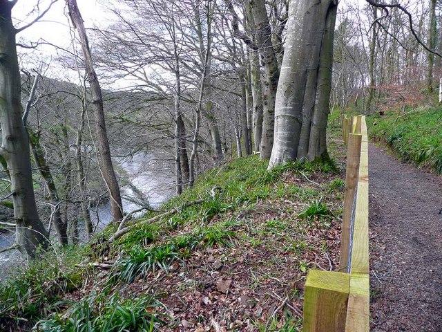 The River Ayr Way
