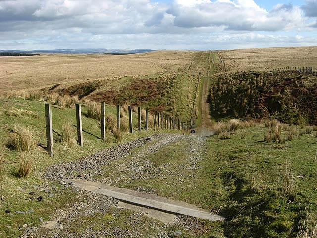 A track near Long Grain Head