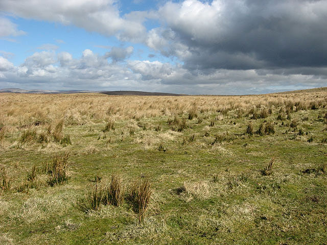 Rough grazing to the east of Hope Burn