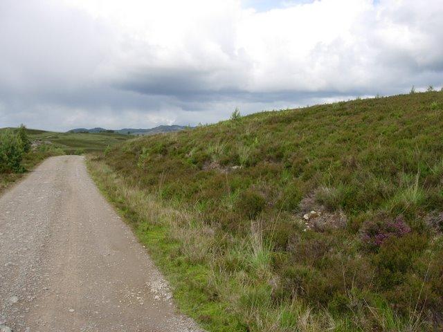 Track through Corrimony reserve