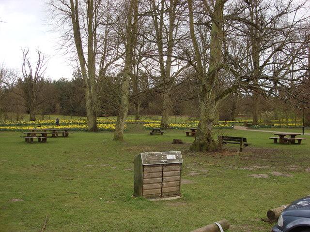 Picnic area, Nowton Park