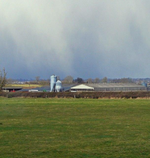 Gallops Farm