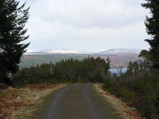 Forest road in Rannoch Forest